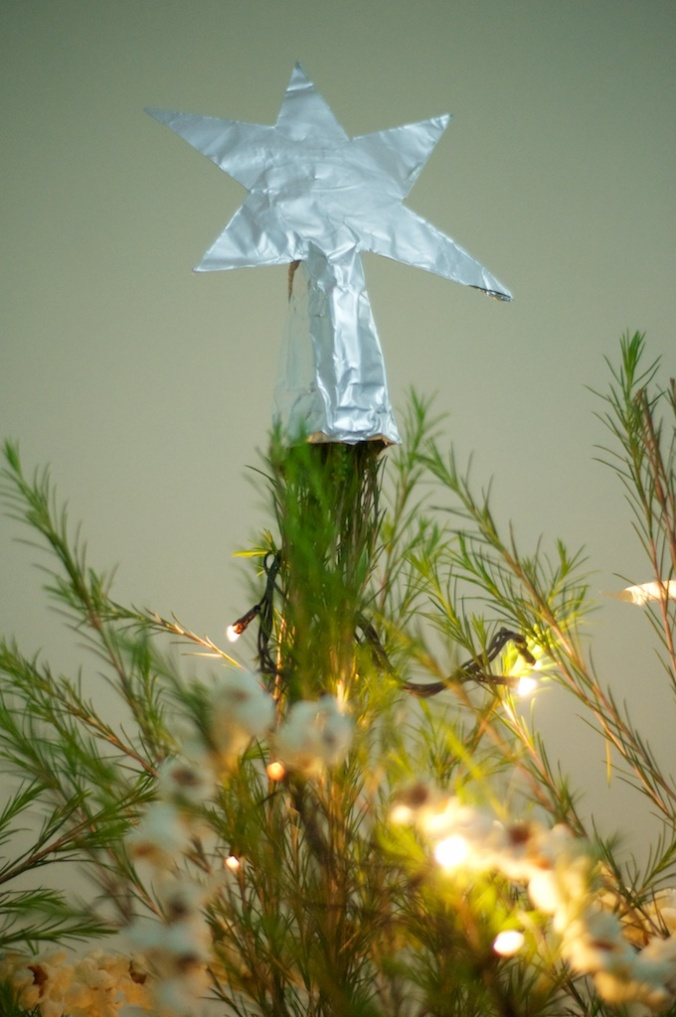 Christmas Tree 035
