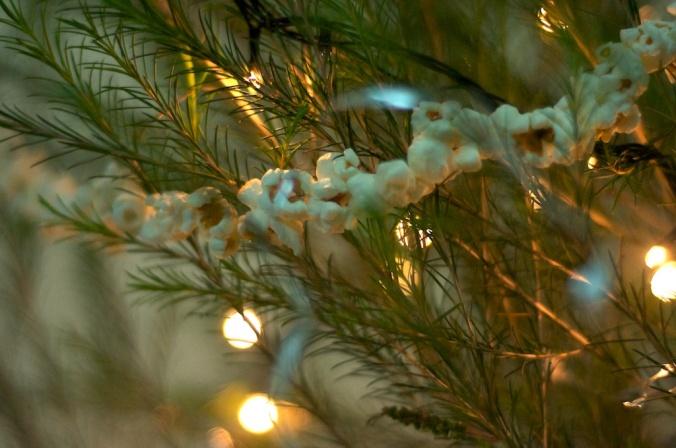 Christmas Tree 036